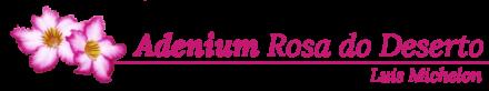 Adenium Rosa do Deserto – Luis Michelon