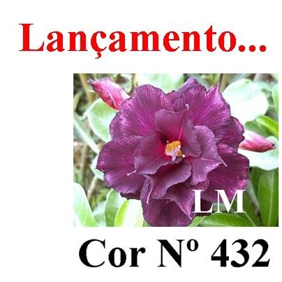 Cor Nº 432 (3) LM Lançamento