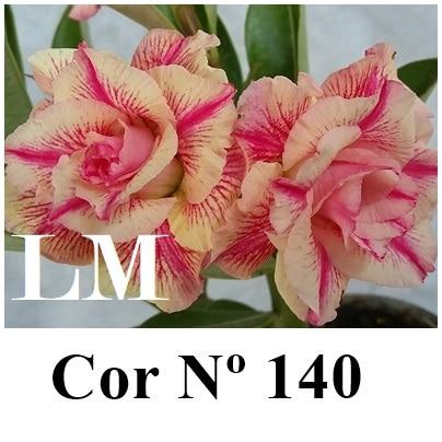 Cor Nº 140 (2) LM