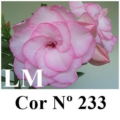 Cor Nº 233 (2) LM