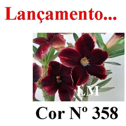 Cor Nº 358 (2) LM Lançamento