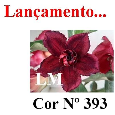 Cor Nº 393 (2) LM Lançamento