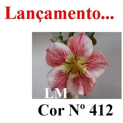 Cor Nº 412 LM Lançamento