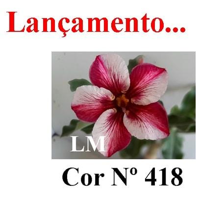 Cor Nº 418 LM Lançamento