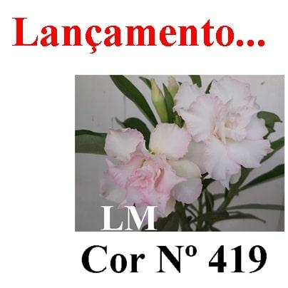 Cor Nº 419 (2) LM Lançamento