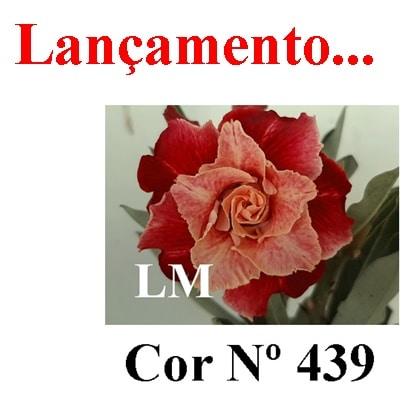 Cor Nº 439 LM Lançamento
