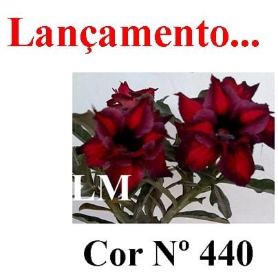 Cor Nº 440 LM Lançamento