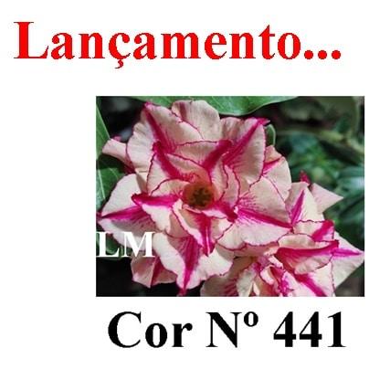Cor Nº 441 LM Lançamento
