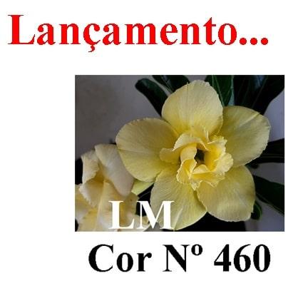 Cor Nº 460 LM Lançamento – Copia
