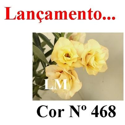 Cor Nº 468 (2) LM Lançamento