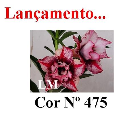 Cor Nº 475 LM Lançamento