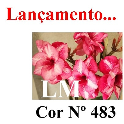 Cor Nº 483 LM Lançamento