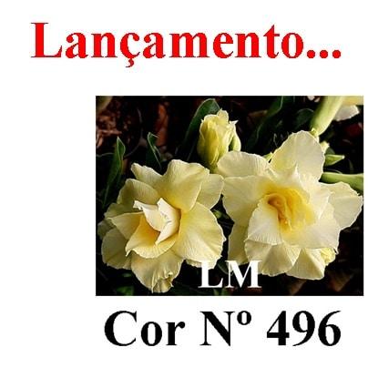 Cor Nº 496 (5) LM Lançamento