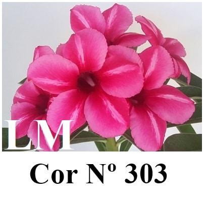 Cor Nº 303 (3) LM