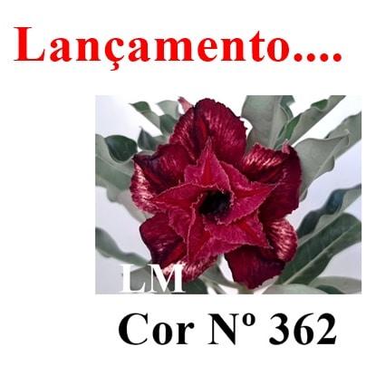 Cor Nº 362 LM lançamento (2)