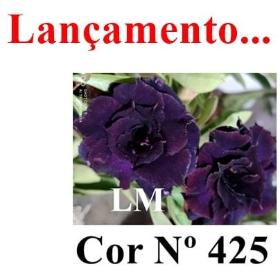 Cor Nº 425 LM Lançamento