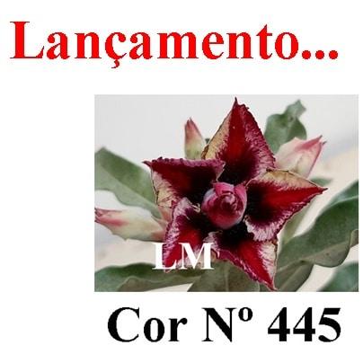Cor Nº 445 LM Lançamento