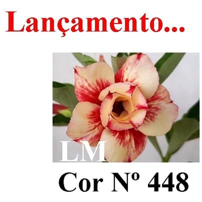 Cor Nº 448 (2) LM Lançamento
