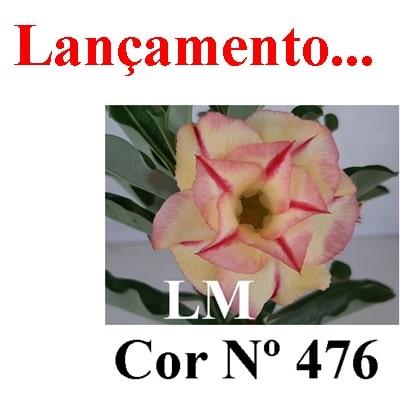 Cor Nº 476 LM Lançamento