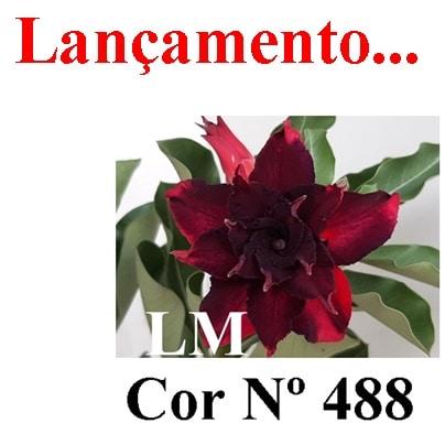 Cor Nº 488 LM Lançamento