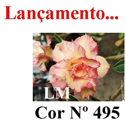 Cor Nº 495 LM Lançamento