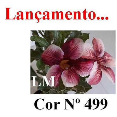 Cor Nº 499 LM Lançamento