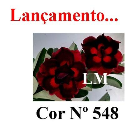 COR Nº 548 LM Lançamento