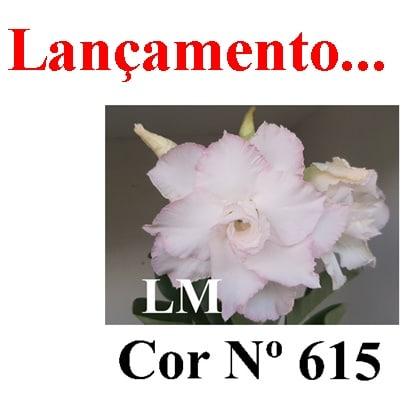 COR Nº 615 (2) LM Lançamento