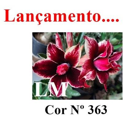 Cor Nº 363 LM lançamento