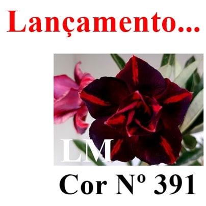 Cor Nº 391 LM Lançamento