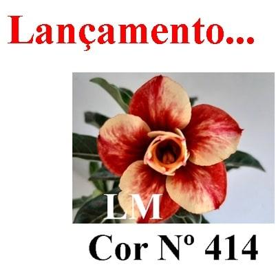 Cor Nº 414 (5) LM Lançamento