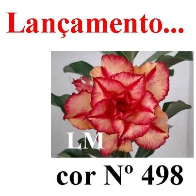 Cor Nº 498 LM Lançamento