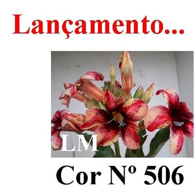 Cor Nº 506 (2) LM Lançamento