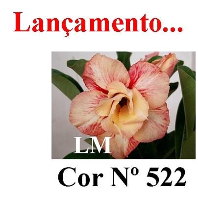 Cor Nº 522 LM Lançamento