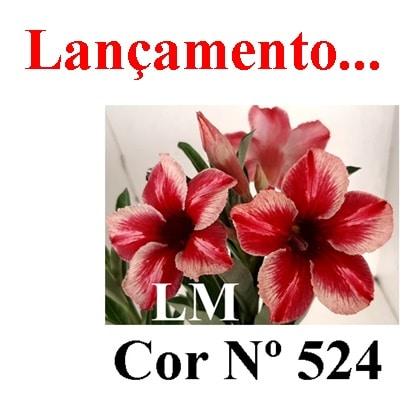 Cor Nº 524 LM Lançamento