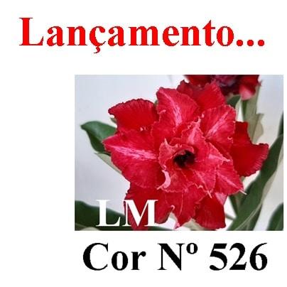 Cor Nº 526 LM Lançamento