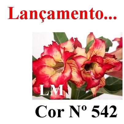 Cor Nº 542 LM Lançamento