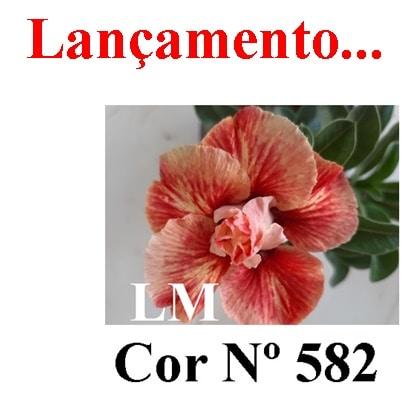 Cor Nº 582 LM Lançamento