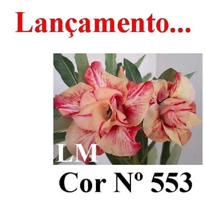 cor Nº 553 LM Lançamento