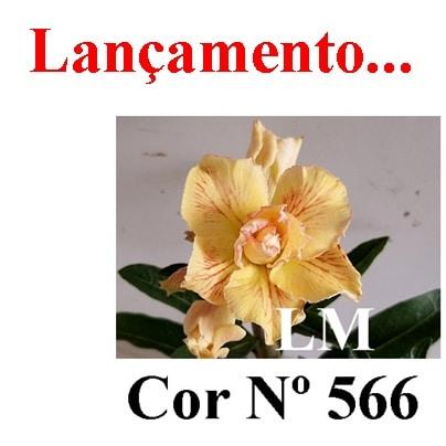 COR Nº 566 (2) LM Lançamento