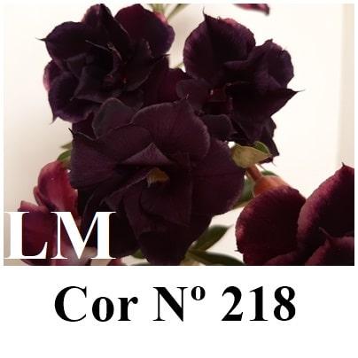 Cor Nº 218 (5) LM