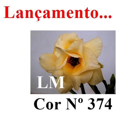 Cor Nº 374 LM Lançamento