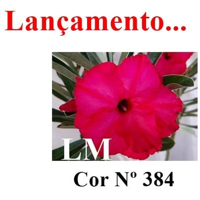 Cor Nº 384 LM Lançamento