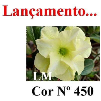 Cor Nº 450 (2) LM Lançamento