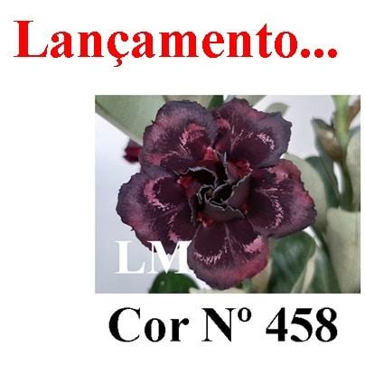 Cor Nº 458 (2) LM Lançamento