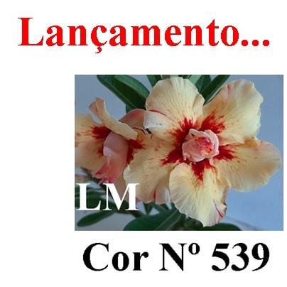 Cor Nº 539 LM Lançamento