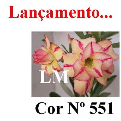 Cor Nº 551 (2) LM Lançamento
