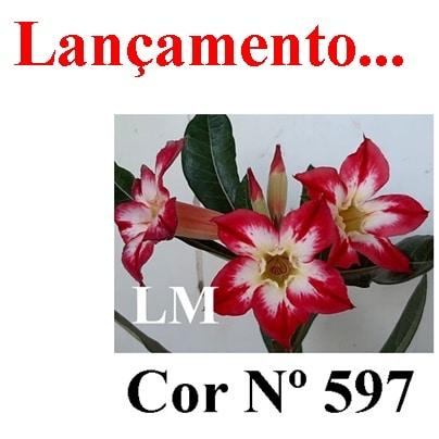 Cor Nº 597 LM Lançamento