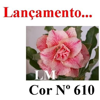 Cor Nº 610 LM Lançamento