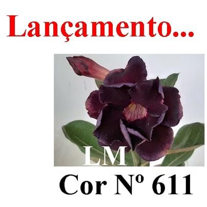 Cor Nº 611 LM Lançamento